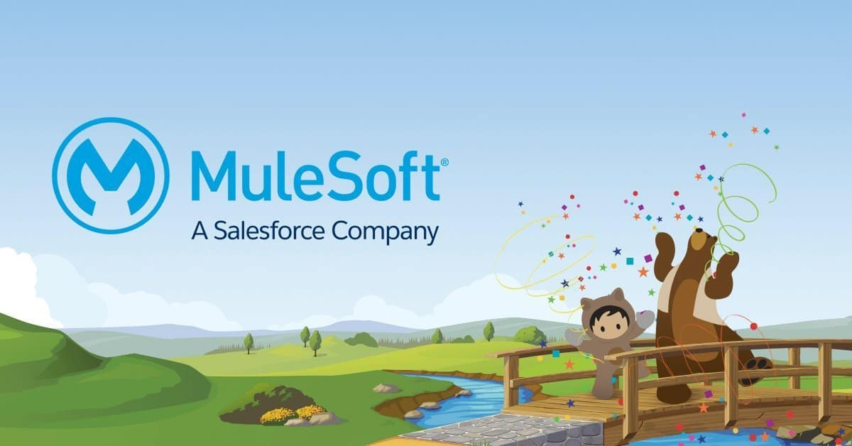 What is Mulesoft and why is it worth $6.5 billion?