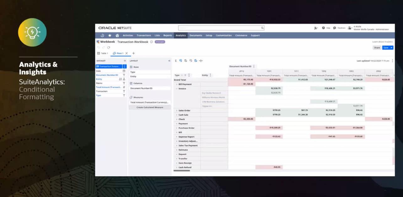 NetSuite Analytics and Insights